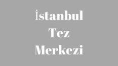 İstanbul tez merkezi